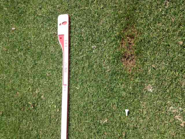 Tee Broken and Divot After Hybrid Swing